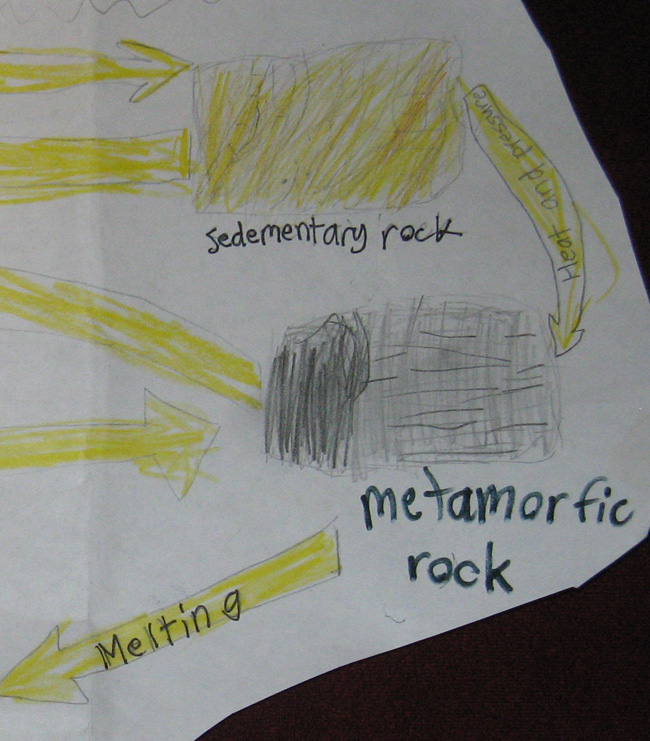 Sedimentary and Metamorphic