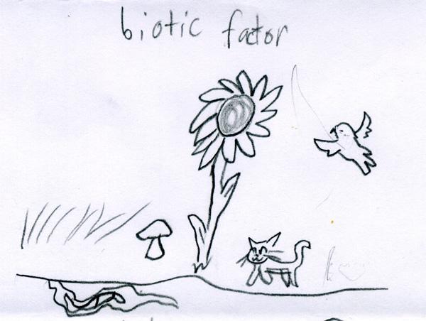 Biotic factor
