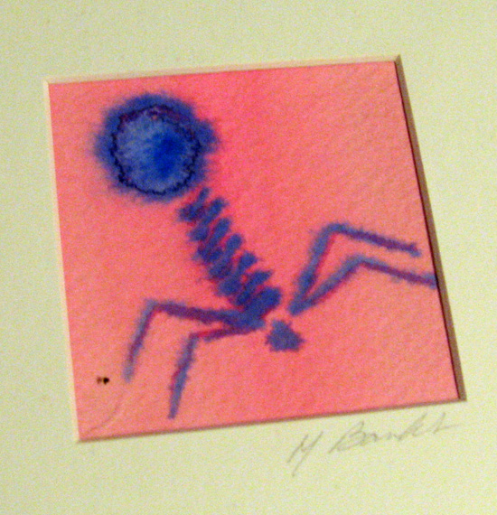 Phage watercolor by Michele Banks